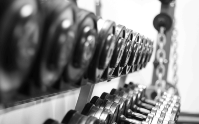 10 Musts in Muscle Building