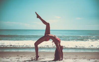 Video Blog | Shape it fitness Tarzana Gym